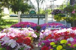 Country Gardens Garden Center Robbinsville NJ Mercer County